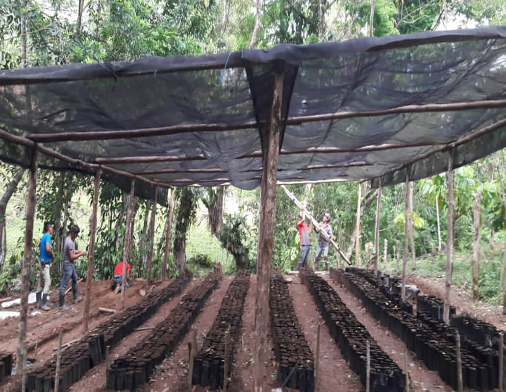 Eigene Farm im Aufbau
